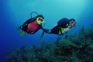 A couple of suba divers near a coral reef.