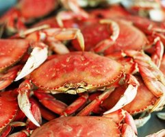 Blue crabs are native to Maryland's Chesapeake Bay watershed.