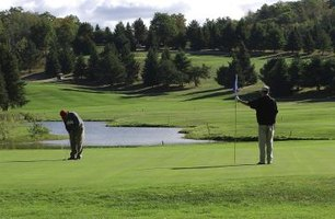 Zoysiagrass is often used for lawns, parks and golf courses.