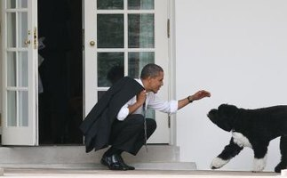 Barack and Bo Obama greet each other outside of the Oval Office.