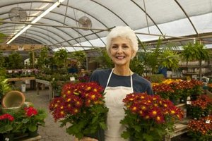 A woman holding plants inside of a greenhouse.