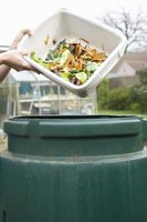 Compost bins reduce garbage and can help keep plants healthy.