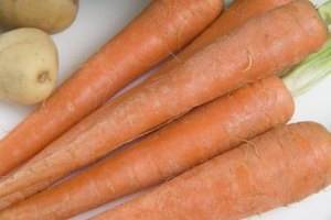 Select fresh, undamaged carrots for drying.
