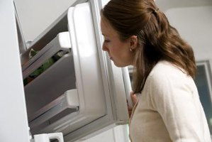 Examine you refrigerator before calling for professional repair.