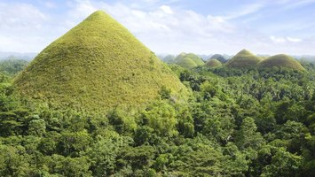 Bohol Province's Chocolate Hills turn from green to brown in the dry season.
