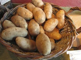 A basket filled with Russet poatoes.