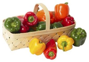 Green, yellow and red sweet peppers all come from the same plant.