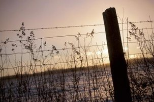 Woven wire fence is often combined with a strand or two of barbed wire to make it predator proof.