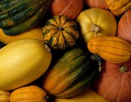 Summer squash are cousins of winter squash.