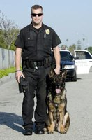 Official K-9 officers serve an important role in protecting the community.