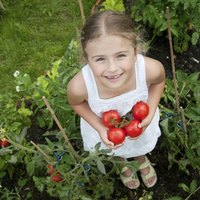 Empower children to find the joy in growing fresh vegetables.