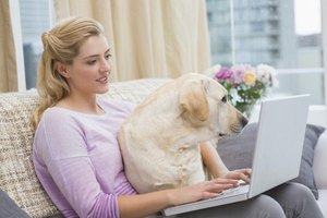 Woman typing on laptop with dog in her lap.