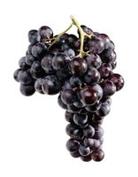There are about 8,000 grape varieties.