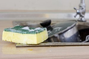 A fresh sponge harbors little bacteria.