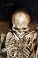 The Time Required for the Human Body to Decay Down to Just ...