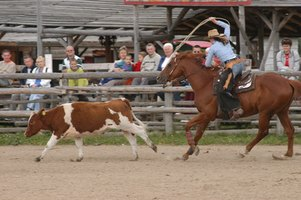 Rodeo Events in Michigan
