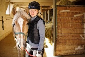 Equine Studies top 10 colleges in usa