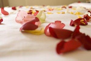 close-up of rose petals sprinkled on a bedspread.