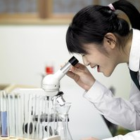 Student looking through microscope in laboratory.