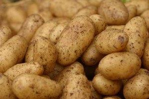 how to build a wooden potato bin