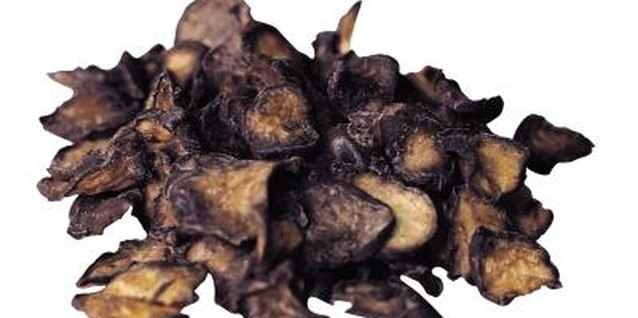 Dried morels are one of the most popular wild mushrooms.