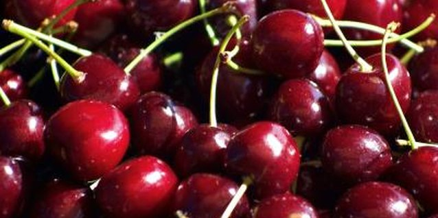 Bing cherries are sweet and juicy.