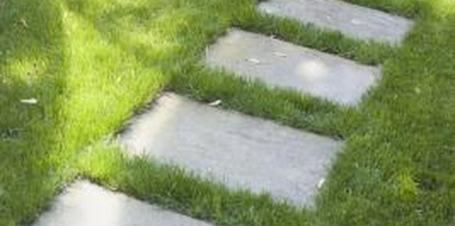 How to Clean a Concrete Pathway Without Harming the Surrounding Grass