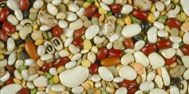Cranberry, red kidney, pinto, navy and lima beans are all examples of shell beans.