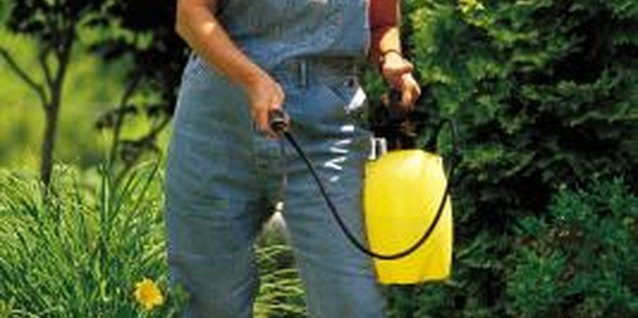 How to Use a Pesticide Sprayer