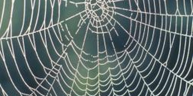 How to Make Spiderwebs for Halloween Decorations