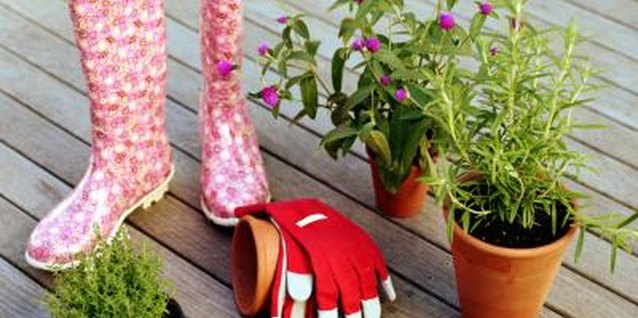 Transform unwanted shoes into beautiful planters.
