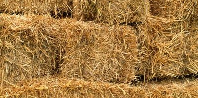 Hay bales fit the theme at a cowboy party.