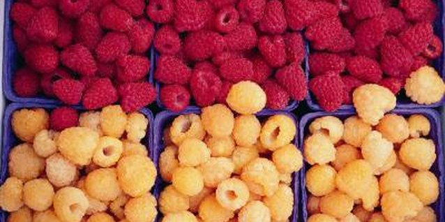 Plant a mix of red and golden raspberries.
