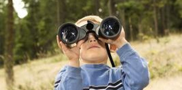 Observation Activities for Children