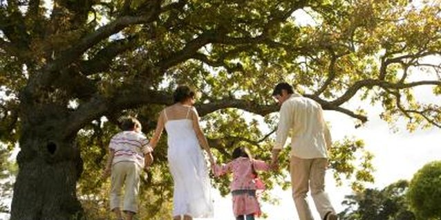 Go for a family walk and have a picnic in the park.