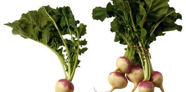 What Is the Difference Between a Turnip & a Rutabaga?
