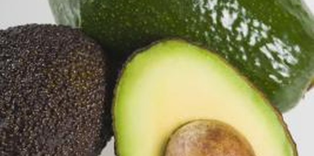 Avocado seeds can take up to three months to germinate.