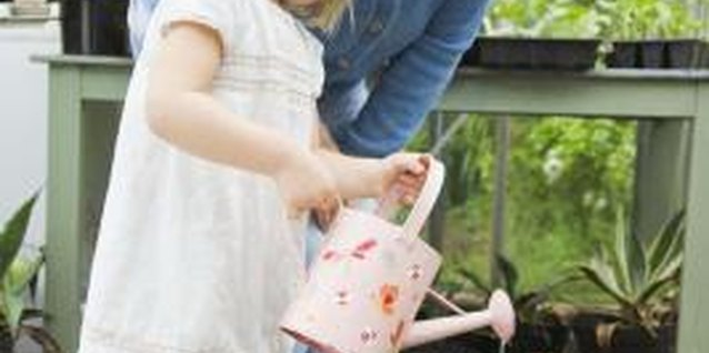 Offer your little one child-sized gardening tools to make it easier to care for plants.