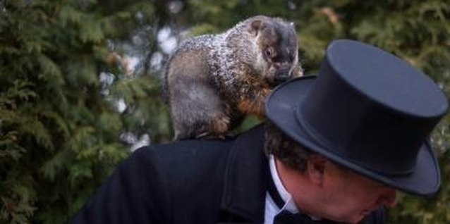 How to Explain Groundhog's Day to Preschoolers