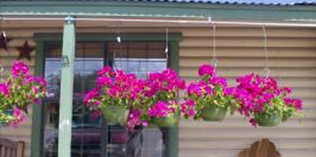 Hanging baskets help screen your porch and add structure.