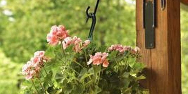 How to Install a Hook for a Hanging Plant Basket