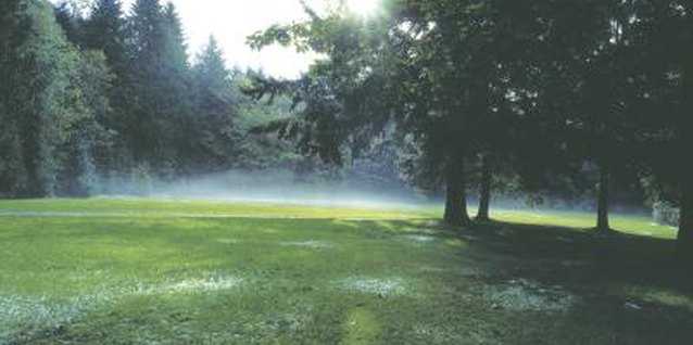 Sprinkler timers ensure your yard is watered regularly.