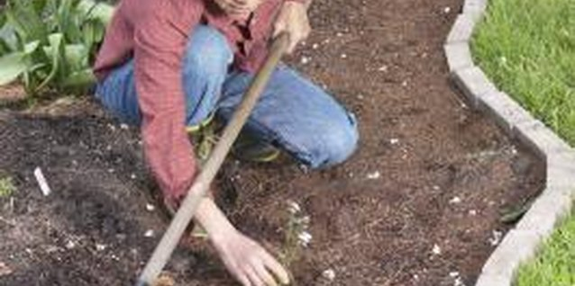 The Best Way to Keep Weeds Out of Your Flower Beds