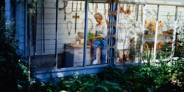 This woman closed in her porch and created a greenhouse.