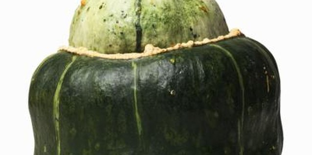 Bush buttercup squash are easy to grow.