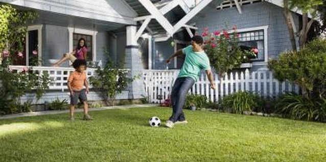 A lush, green lawn improves your home's aesthetic value.
