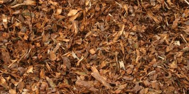 Add mulch to a flowerbed to retain moisture and reduce irrigation.