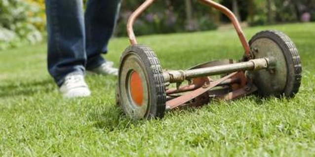 Dull blades can make reel mowers cut inefficiently.