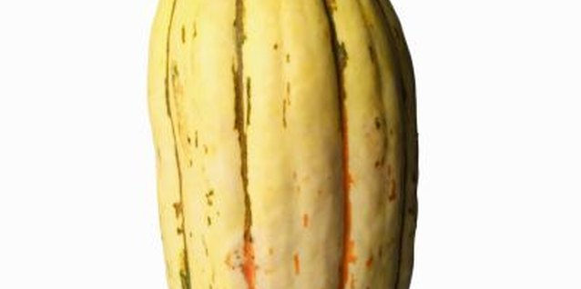 One delicata squash is large enough to serve two people.