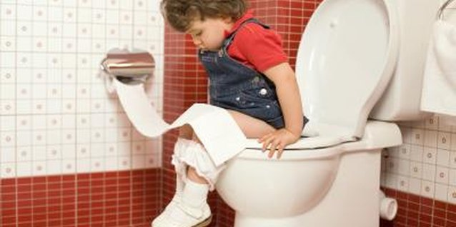 Teach your toddler to use a standard-sized toilet.